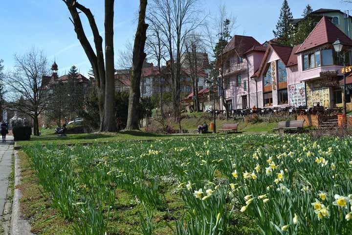 погода в Трускавці весною